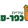אלווין ישראל